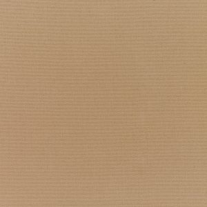 Canvas Cocoa