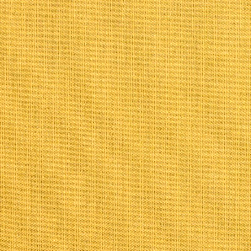 Spectrum Daffodil
